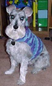 Easy DOG SWEATER