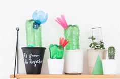 Plastic bottles into cacti lights